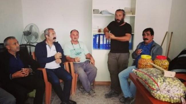 Komünist Başkan Mut'ta Zeytin Hasadına Katıldı