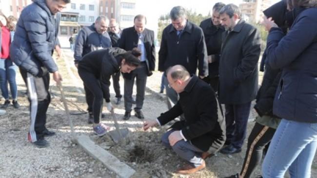 Okul Bahçelerine 400 Hünnap Fidanı