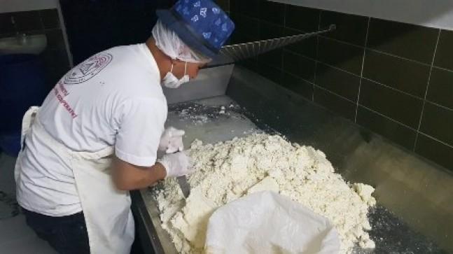 Kızılova Obruk Peyniri Üretimine Başlandı