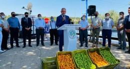 Mut Sebze ve Meyve Hali Açıldı
