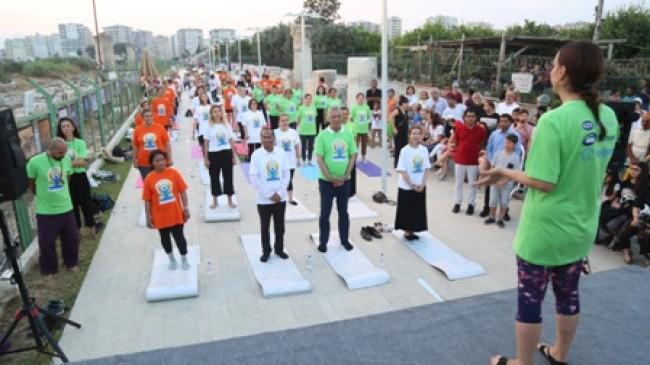 Soli Sütunları Gölgesinde Yoga