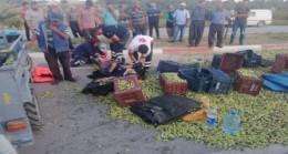 Mut'ta zeytin ve işçi taşıyan  taktak devrildi: 7 YARALI