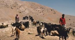 Mersin Bolkar Dağları Göçer Yörüklere Emanet