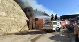 Soğuk Hava Deposunda Çıkan Yangın Korkuttu